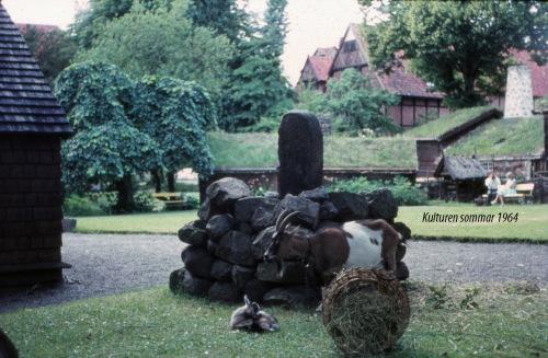 1964 Kulturen -2