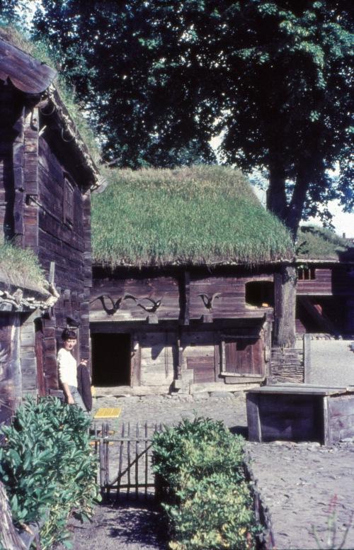 1964 Kulturen
