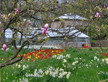 Växthusen; en offentlig oas för alla