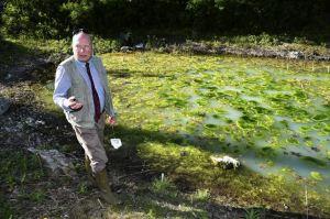 Dammen vid Villa Sunna, med dess döda salamandrar. Foto: Sydsvenskan