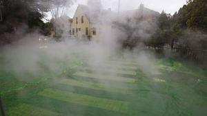 Fjärrvärmeläcka vid Gyllenkroks allé 2010. Den gröna färgen används för att spåra just läckor.